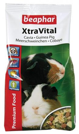 Xtra Vital krmivo pre Morca s vit.C 1kg
