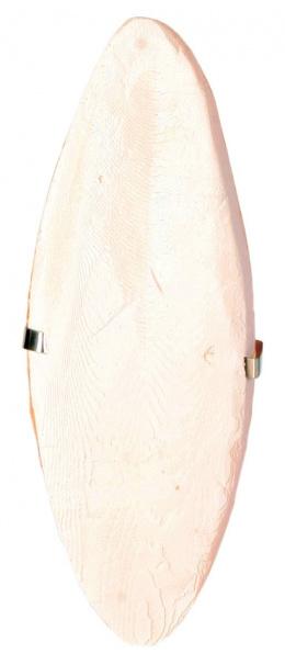 Sepiova kost balena s drziakom 16 cm