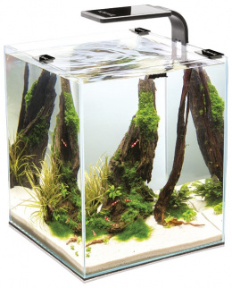 Akvarium set Shrimp Smart 20*20*25cm, 10l cierne
