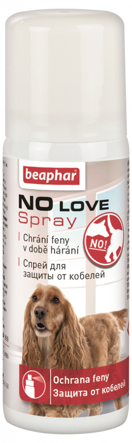 No Love Spray pro har.feny 50ml