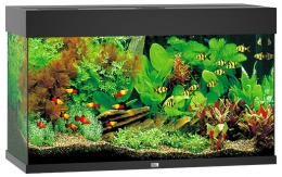 Akvarium set Rio LED 125 cierne  81*36*50cm,125l