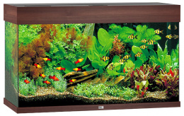 Akvarium set Rio LED 125 tm.hnede  81*36*50cm,125l