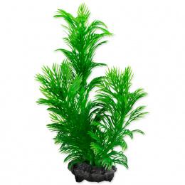Rastlina Tetra Green Cabomba S 15cm