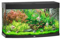 Akvarium set Vision 180 LED cerne 92*55*41cm,180l
