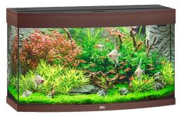 Akvarium set Vision 180 tm. hnede 92*55*41cm,180l