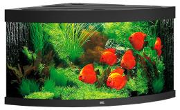 Akvarium set Trigon LED 350 cierne 123*87*65cm,350l