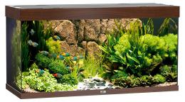 Akvarium  Rio LED 350 tm. hnede 121*51*66cm,350l