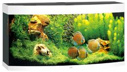Akvarium set Vision LED 260 biele 121*46*64cm,260l