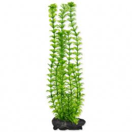 Rastlina Tetra Ambulia L 30cm