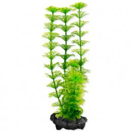 Rastlina Tetra Ambulia S 15cm