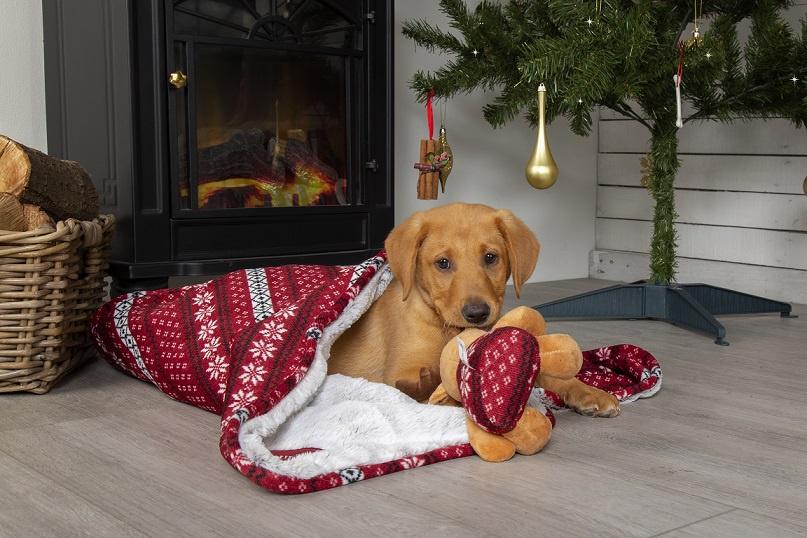 Deka Scruffs Santa Paws Blanket & Reindeer Gift 110x72,5 cm