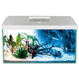 AQUAEL Akvarium set LEDDY LED DN 60x30x30cm, 54l biele