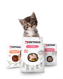 ONTARIO kitten balíček
