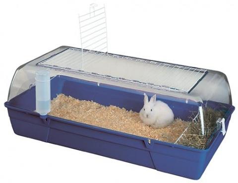 Box SAVIC Rody Rabbit modrý