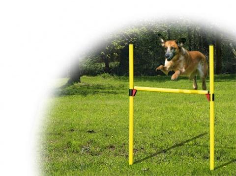 Set překážkový DOG FANTASY Agility 2