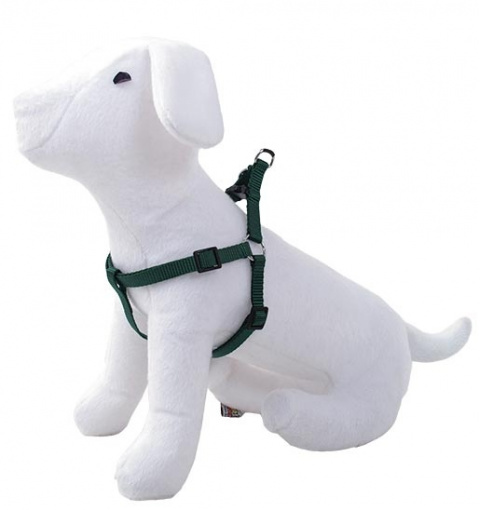 Postroj DOG FANTASY zelený 35 - 60 cm