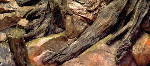 Pozadí AQUA EXCELLENT Root 80 x 40 cm