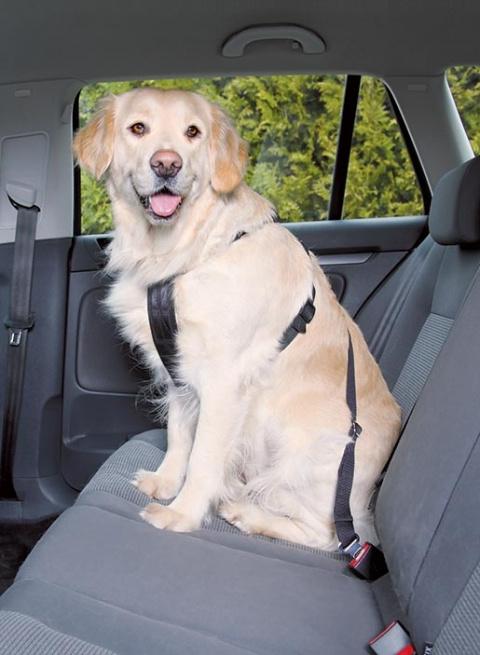Postroj bezpečnostní pro psy do auta Trixie L 70-90cm černá title=