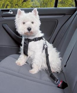 Postroj bezpečnostní pro psy do auta Trixie S 30-60cm černá
