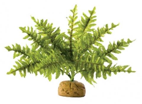 Rostlina EXO TERRA Boston Fern malý