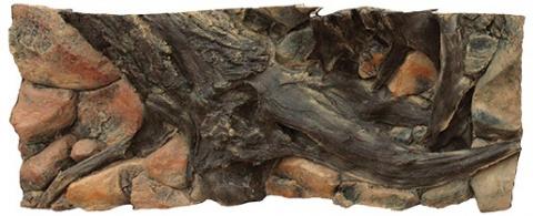 Pozadí AQUA EXCELLENT Amazonia 120 x 50 cm