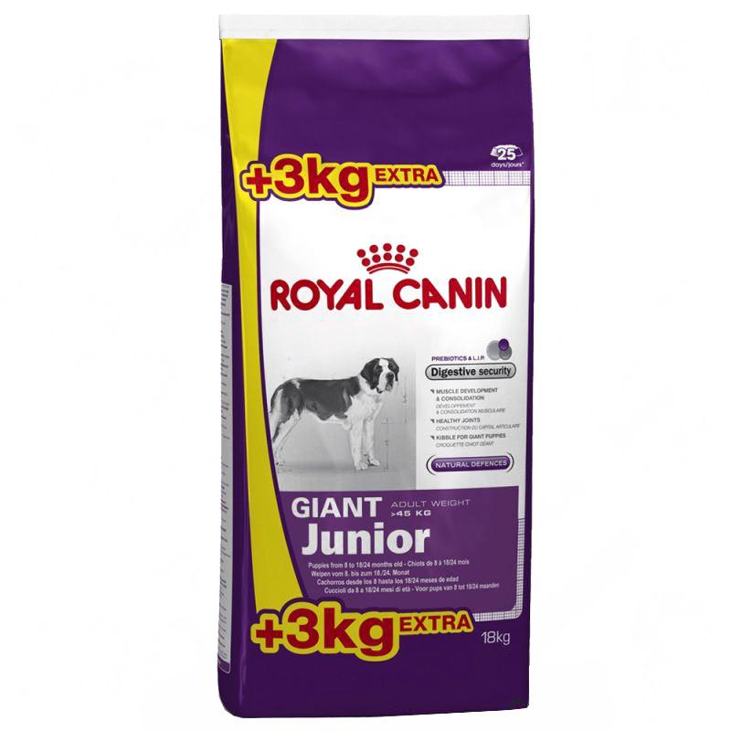 Royal Canin SHN GIANT JUNIOR 15+3 kg