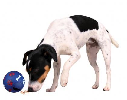 Hračka pro psy Trixie míč na pamlsky 7cm   Super zoo