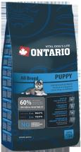 ONTARIO Puppy 13kg