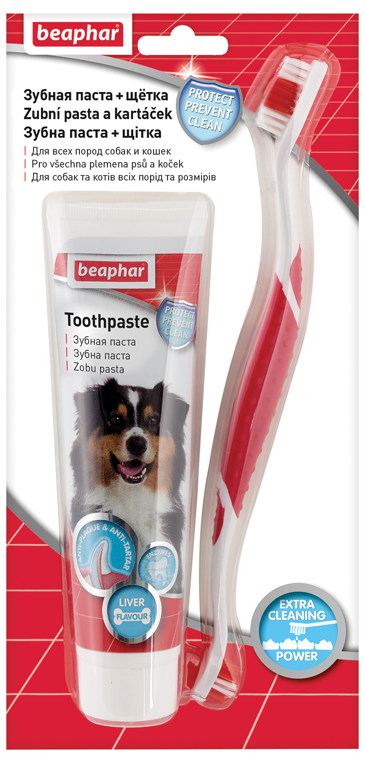 Zubní pasta + kartáček Beaphar