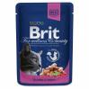 BRIT Premium Cat Salmon 100g