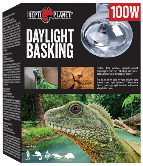 Repti Planet žárovka Daylight Basking Spot 100W title=