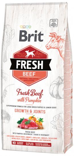 Brit Fresh Beef with Pumpkin Puppy Large 12kg
