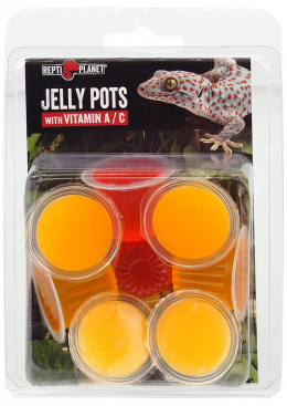 Repti Planet krmivo Jelly Pots Fruit 8ks