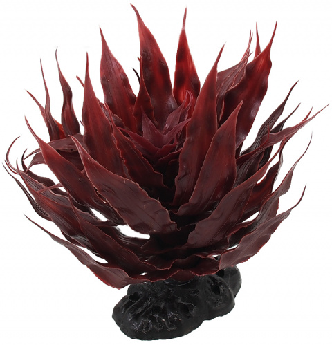 Rostlina Repti Planet sukulent Agave červená 18cm title=