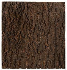 Repti Planet Pozadí korek přírodní 43,5x41cm