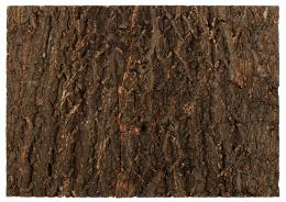 Repti Planet Pozadí korek přírodní 58,5x41cm