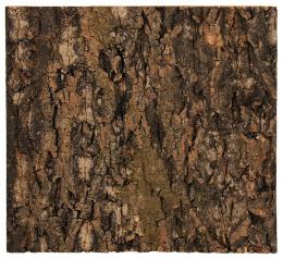 Repti Planet Pozadí korek přírodní 29x27,3cm