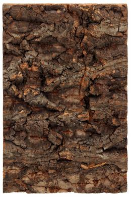 Repti Planet Pozadí korek přírodní 19x12,3cm