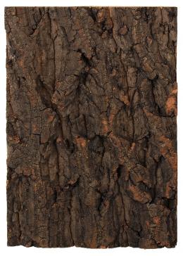 Repti Planet korkové pozadí přírodní 19x27,3cm
