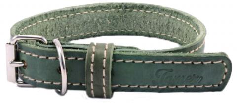 Kožený obojek Tamer 2,5cm/45cm zelený title=