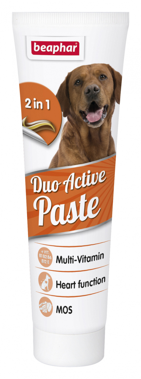 Multivitaminová pasta Beaphar Duo Active 100g title=