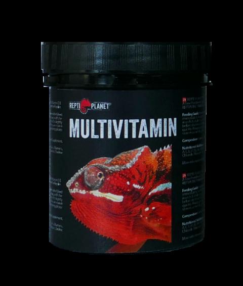 Doplňkové krmivo Repti Planet Multivitamin 125g