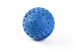 Hračka Kiwi Walker míček modrý 9cm