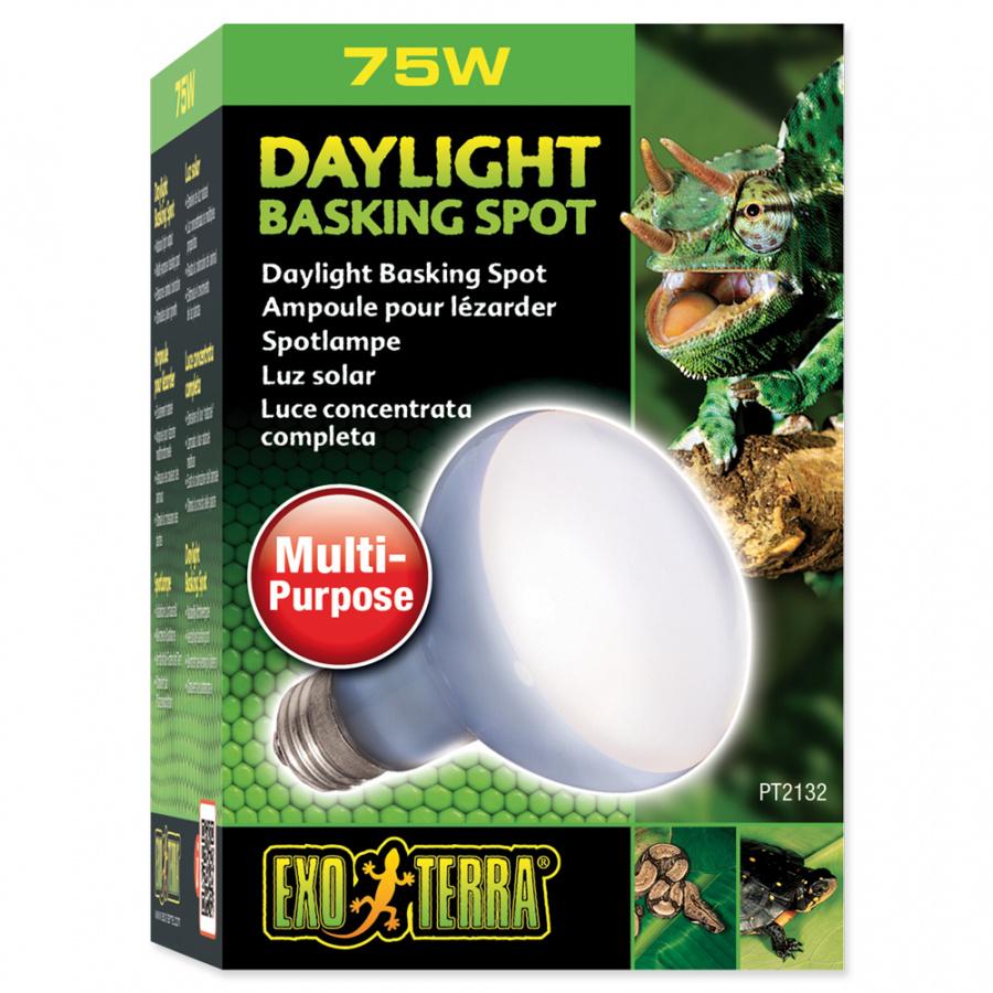 Žárovka EXO TERRA Daylight Basking Spot 75W