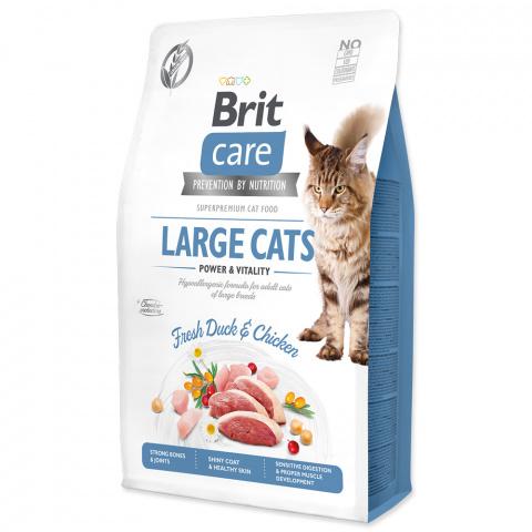 Brit Care Cat Grain-Free Large cats Power & Vitality 2kg title=