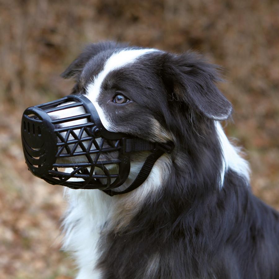 Náhubek pro psy Trixie plastový S černá 17cm