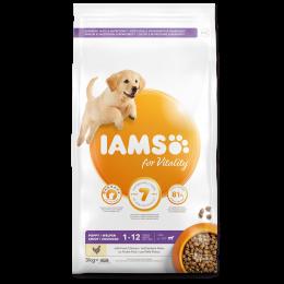 IAMS Dog Puppy Large Chicken