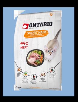 Ontario Cat Shorthair