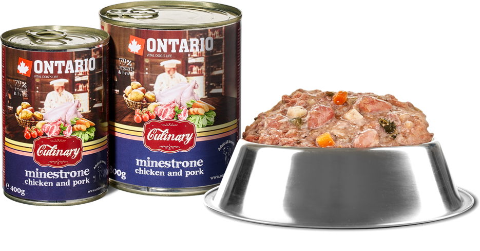 ONTARIO konzerva Culinary Minestrone Chicken and Pork 800g