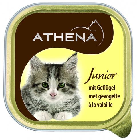 Konservi kaķiem - Athena Junior, 100 g title=